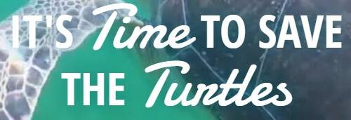 Turtle Time, Inc.